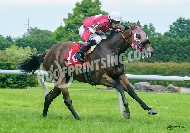 Mast Cove winning at Delaware Park on 7/17/17