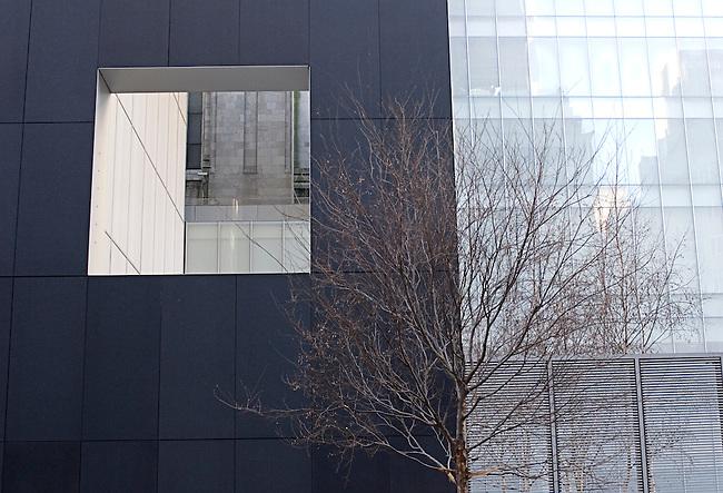 Museum of Modern Art, New York, New York