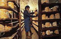 Europe/France/Auvergne/63/Puy-de-Dôme/Parc Naturel Régional du Livradois-Forez/Ambert: Fourme d'Ambert en affinage et affineur