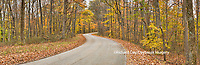 63995-00907 Road in fall, Brown County State Park, IN