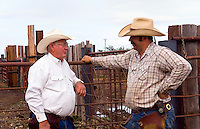 American cowboys.