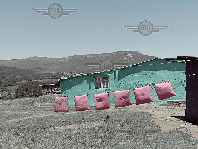 A row of pink pillows dry on a line outside a neatly painted green house. Graeme Williams' pictures of the environments occupied by some of South Africa's poorest people focus on the interiors and exteriors of people's homes, accentuating the minutiae of the occupants' day-to-day dwelling places. The bright colours captured in these photographs are suggestive of resilience, hope and a sense of humanity that survives in these poverty-stricken communities...