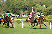 mr hooker, wins, saratoga, curtis payne