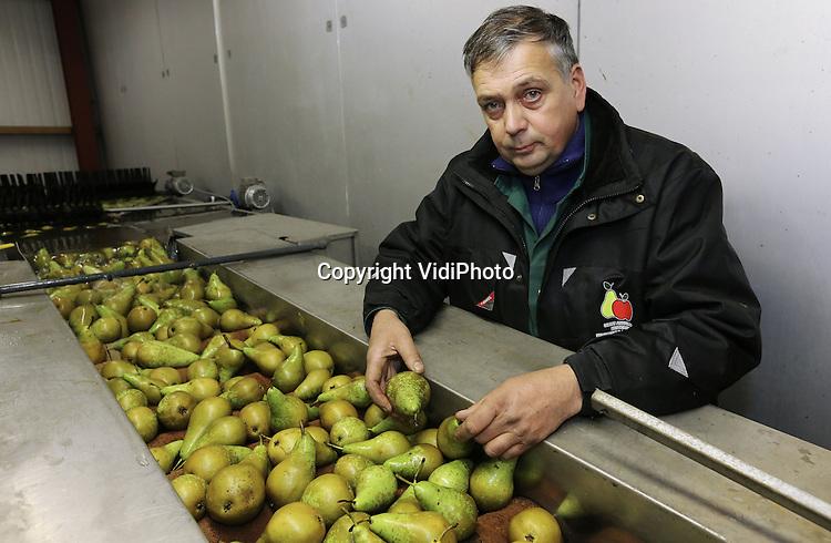 Foto VidiPhoto<br /> <br /> KESTEREN - Portret van fruitteler Dick de Kat Angelino uit Kesteren, die zich inzet binnen de werkgroep van de NFO om wildschade te voorkomen.