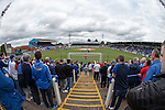 Rangers fans at Palmerston
