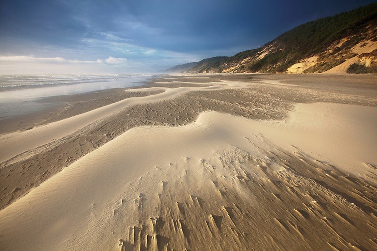 Windswept sand creates ephemeral patterns on the beach at Carl G. Washburne State Park, Oregon, USA