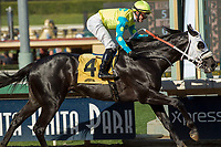 ARCADIA, CA  FEBRUARY 3 : #4 Lombo, ridden by Flavien Prat, wins the Robert B. Lewis Stakes (Grade lll) on February 3, 2018 at Santa Anita Park in Arcadia, CA.(Photo by Casey Phillips/ Eclipse Sortswire/ Getty Images)