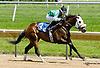Tiz Showbiz winning at Delaware Park racetrack on 6/16/14