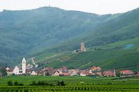 vineyard katzenthal alsace france