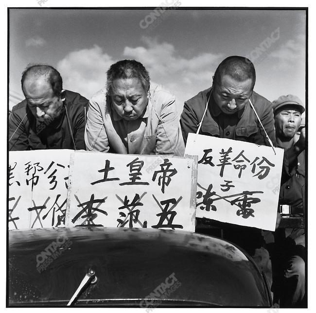 After a month of criticism sessions, Chen Lei, Li Fanwu, and Wang Yilun (right to left) are paraded through the streets of Harbin in trucks, their names and accusations - counterrevolutionary, local despot, and black gang element - prominently displayed on placards around their necks. Harbin, 12 September 1966