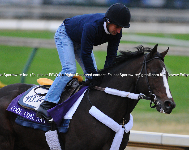 3 November 2010:  Cool Coal Man, trained by Nicholas P. Zito and to be ridden by jockey Julien Leparoux, works out for the 2010 Breeders Cup at Churchill Downs in Louisville, Kentucky.(Scott Serio/Eclipse Sportswire)