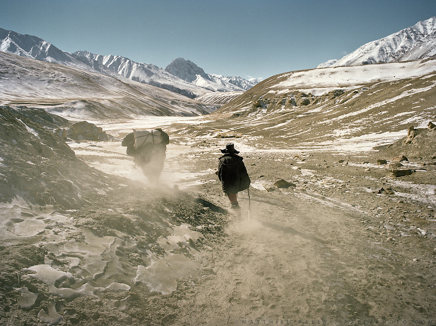 Yak riding down from the Little Pamir. .Winter expedition through the Wakhan Corridor and into the Afghan Pamir mountains, to document the life of the Afghan Kyrgyz tribe. January/February 2008. Afghanistan