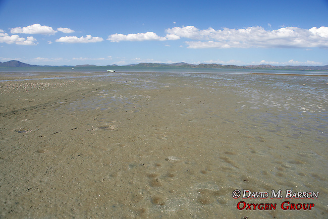 Chira Island Flats