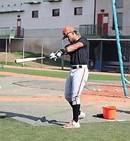 Luis Matos - San Francisco Giants 2020 spring training (Bill Mitchell)