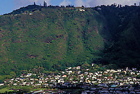 View of the houses in beautiful Manoa valley