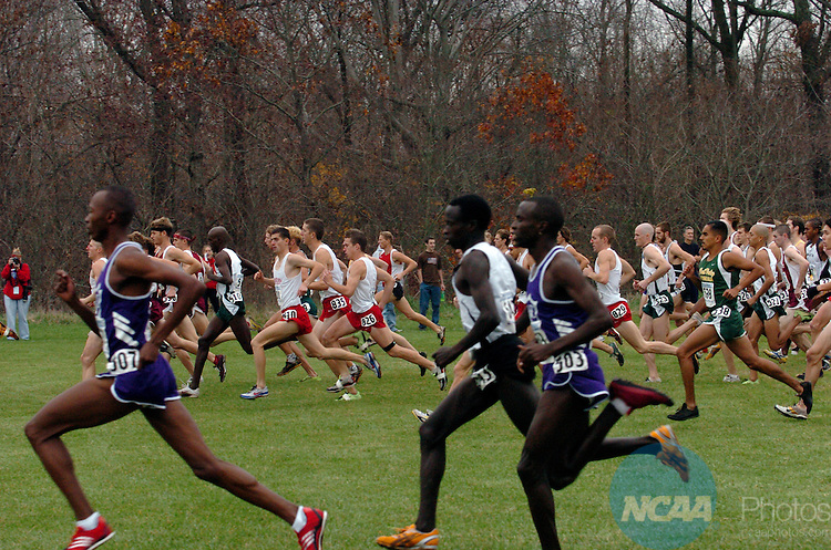 20 NOV 2004:  Runners start off the men's race during the Division II Men's Cross Country Championship held at the University of Southern Indiana in Evansville, IN.  Chris Hall/NCAA Photos