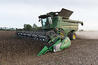Harvesting Beans<br /> Picture Tim Scrivener 07850 303986<br /> &hellip;.covering agriculture in the UK&hellip;.