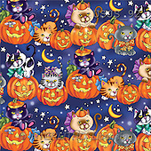 Janet, REALISTIC ANIMALS, Halloween, paintings, Cats on Pumpkins 3(USJS92,#A#)