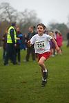2013-12-15 Holly Run 02 AB u11B