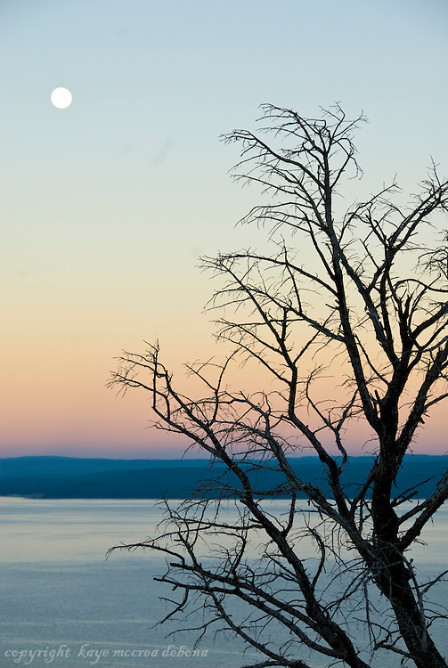 Silhouettes and sunrises of Yellowstone