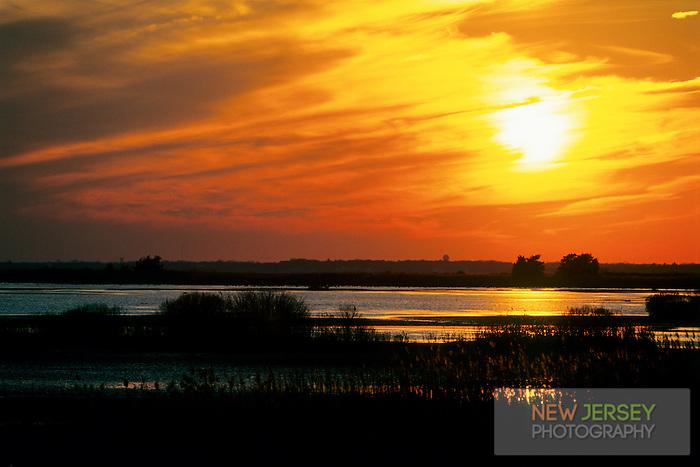 Sunset.  Edwin Forsythe National Wildlife Refuge, New Jersey
