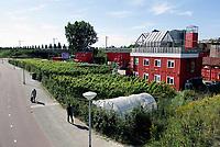 Nederland Amsterdam -  juli 2019. De tuin van restaurant Bret bij Station Sloterdijk. Bret Amsterdam is een nieuwe hotspot. Het is gebouwd met behulp van een aantal rode zeecontainers en heeft industriële look. Bij Bret Amsterdam gaat het om duurzaamheid. In de keuken worden zoveel mogelijk lokale seizoensproducten gebruikt. In de tuin groeien druiven, waarvan wijn wordt gemaakt. Tuin van BRET is van en voor ondernemers die elkaar inspireren en versterken. De Tuin is circulair, innovatief en continu in bedrijf. Een maximale impuls voor en door creatieve ondernemers, met een minimale footprint. Met werkplekken, cultuur en heel veel energie.    Foto mag niet in negatieve context worden gepubliceerd . Foto Berlinda van Dam / Hollandse Hoogte