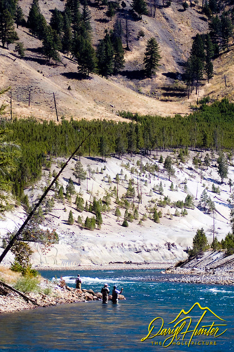 Fly-fishing, Yellowstone River, Yellowstone National Park