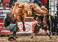 RAM Rodeo'17 0617&18 Orangeville