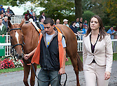 Top grass filly Zagora in the paddock before the Flower Bowl.