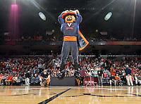 Virginia Cavalier mascot during an NCAA basketball game against Virginia Monday Jan. 20, 2014 in Charlottesville, VA. Virginia defeated North Carolina 76-61.