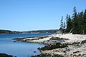 Rocky shore Acadia national park