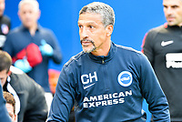 Chris Hughton Manager of Brighton & Hove Albion during the pre season friendly match between Brighton and Hove Albion and Atletico Madrid at the American Express Community Stadium, Brighton and Hove, England on 6 August 2017. Photo by Edward Thomas / PRiME Media Images.