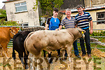Pictured at Kilgarvan Show on Sunday were: Garry Randles, Simon O Connor, Sean Randles