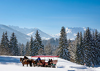 Germany, Bavaria, Upper Bavaria, Chiemgau, Reit im Winkl: romantic sleigh ride through winter wonderland - background Zahmer Kaiser mountain | Deutschland, Bayern, Oberbayern, Chiemgau, Reit im Winkl: romantische Schlittenfahrt durch maerchenhafte Winterlandschaft - im Hintergrund der Zahme Kaiser