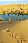 "Afrique. Libye . Serenity and plenitude as we admire the dunes of Oubari reflecting in the still waters of Oum El Ma lake.  Palm-dates trees and reeds border the banks and shelter a few jackals, crows and white head wheatear, or ""moula-moula"", the Touaregs lucky charm bird"