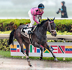 HALLANDALE BEACH, FL - December 09: Miss Mo Mentum, #2, easily wins the $75,000 Hut Hut Stakes for Trainer Mark Casse despite the rain. Tyler Gaffalione in the irons at Gulfstream Park on December 9, 2017 in Hallandale Beach, FL. (Photo by Carson Dennis/Eclipse Sportswire/Getty Images.)