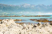 Rocky shores of Kaikoura coastline with Kaikouras mountains in background, Kaikoura, Marlborough Region, South Island, East Coast, New Zealand