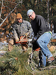 LEAD, S.D. -- FEBRUARY 20, 2013 -- CAPTION   Rick Kothe (foreground) and Dave Whitaker of Aker Woods Co. work at cutting and chunking trees southwest of Lead, S.D Wednesday as a method of treatment for the mountain pine beetle infestation.  (Photo by Richard Carlson/dakotapress.org)
