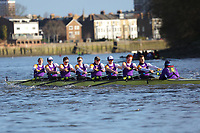 Crew: 6   University of London A   Op Champ<br /> <br /> Quintin Head 2019<br /> <br /> To purchase this photo, or to see pricing information for Prints and Downloads, click the blue 'Add to Cart' button at the top-right of the page.