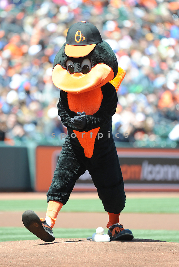 Baltimore Orioles mascot  during a game against the Los Angeles Dodgers on April 21, 2013 at Oriole Park in Baltimore, MD. The Dodgers beat the Orioles 7-4.