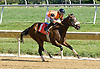 Maid of Dishonor winning at Delaware Park 9/15/12
