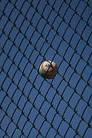 A baseball gets stuck in the chain link fence behind home plate during a Minor League Spring Training game between the Colorado Rockies and the Chicago Cubs at Sloan Park on March 27, 2018 in Mesa, Arizona. (Zachary Lucy/Four Seam Images)