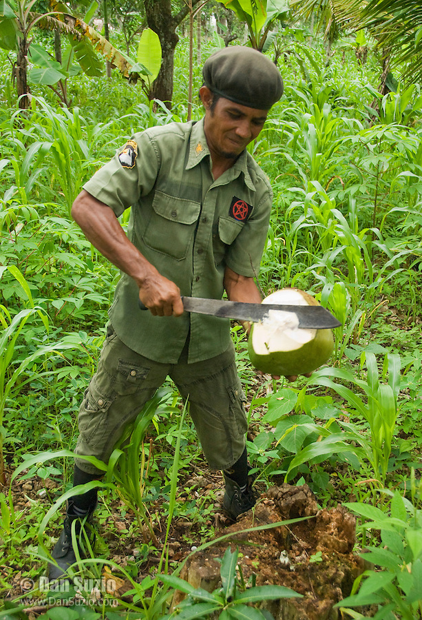 Timorese student Laca Ribeiro uses his machete to open a fresh coconut on Atauro Island, Timor-Leste (East Timor)
