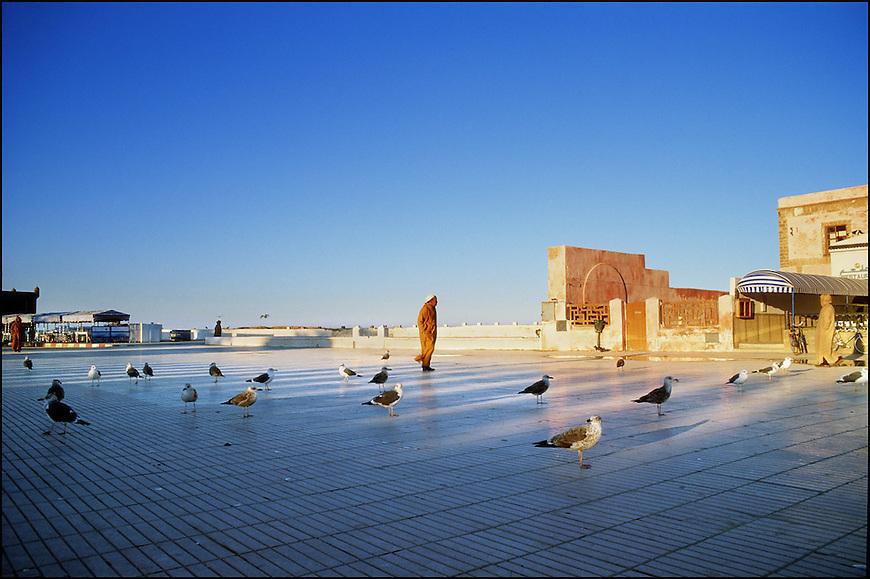 Paesaggi del mondo. Essaouira in Marocco.