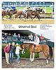 Universal Soul winning at Delaware Park on 5/14/12