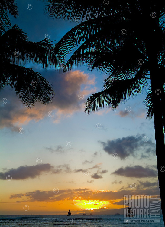 Two palms are silhouetted against a beautiful sunset off Queens Beach in Waikiki.