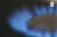 Lit blue gas ring, close-up (Licence this image exclusively with Getty: http://www.gettyimages.com/detail/200337531-001 )