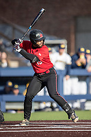 Rutgers Scarlet Knights first baseman Chris Brito (15) at bat against the Michigan Wolverines on April 26, 2019 in the NCAA baseball game at Ray Fisher Stadium in Ann Arbor, Michigan. Michigan defeated Rutgers 8-3. (Andrew Woolley/Four Seam Images)