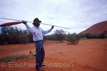 Cassidy Uluru demonstrating spear throwing with a spear thrower (miru) made of mulga (A. aneura). Uluru, Northern Territory. Anangu Tours