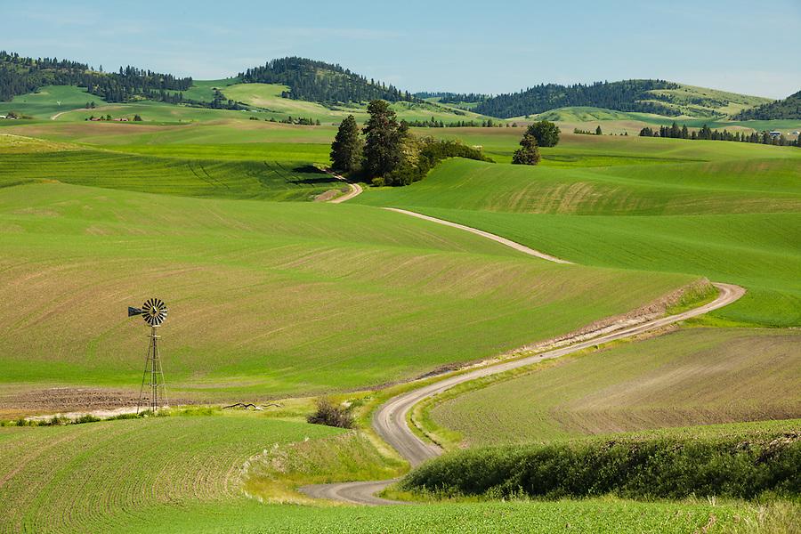 A wind vane is seen among the green hills alongside a curvy road in Eastern Washington in the Palouse region.